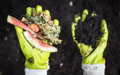 Kokoza: Jak zajistit, aby lidé začali třídit bioodpad